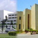 yasmeen taha urdu columnist coronavirus lockdown